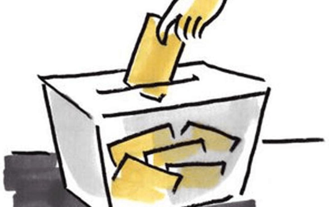 Propostes electorals en matèria de voluntariat