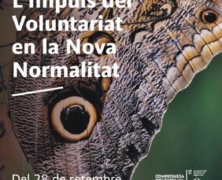 """La PLAVIB participa a les """"Jornades L'Impuls del Voluntariat en la Nova Normalitat"""""""
